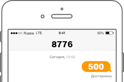 SMS на короткий номер 8776